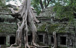 shutterstock_60224710_Angkor